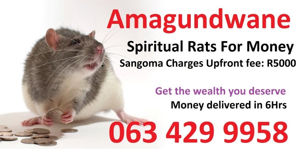 Amagundwane call +27634299958
